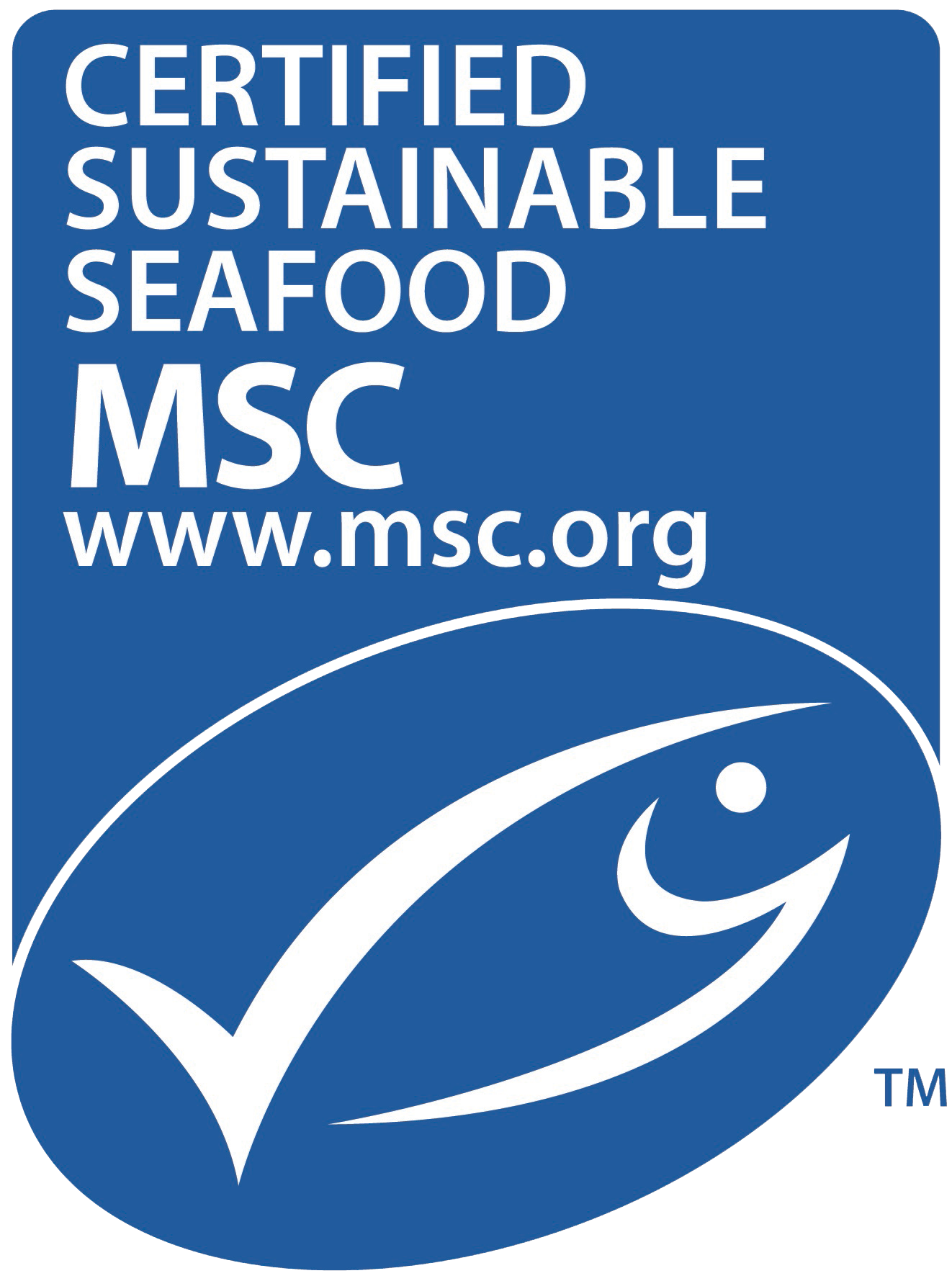 Msc New Logo Vertical2Transparent