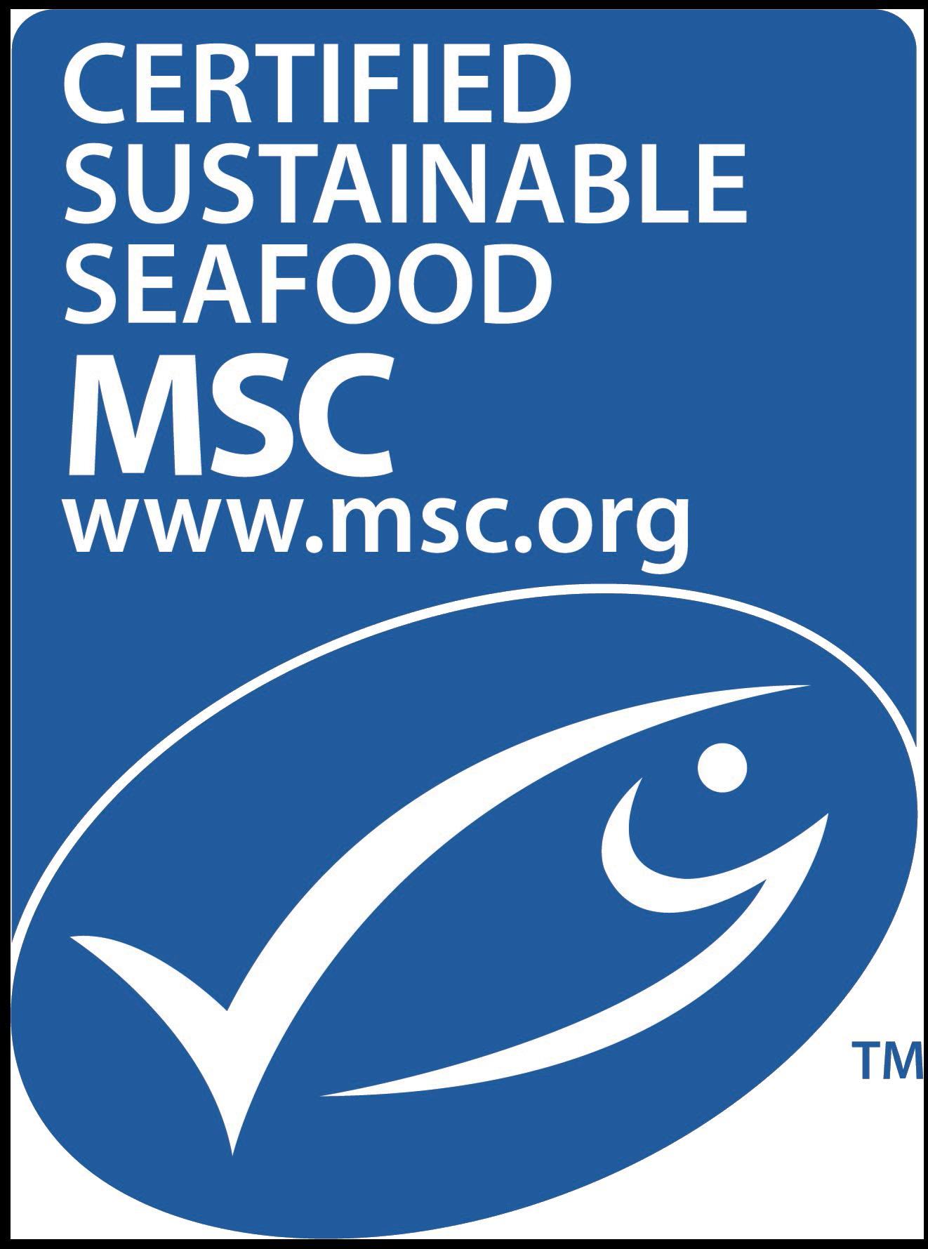 Msc New Logo Vertical2Transparent